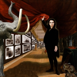 The Collector / The Artist in Her Museum (2005)